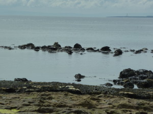 Leisurly enjoying watching the seals watching us - little did we know we had a 3 mile detour ahead!